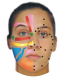 Facial Reflexology - Face Reflexology